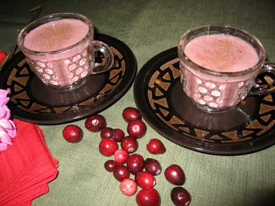 Spiced Cranberry Nog