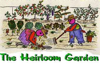 Heirloom Gardening