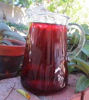 Hibiscus Iced Tea